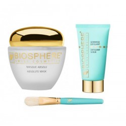 LOT MASQUE ABSOLU+GOMMAGE+PINCEAU